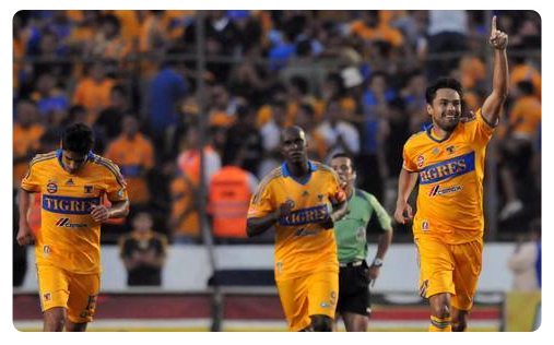 Tigres cartonne et se replace